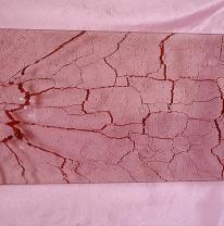 Текстурированное стекло 80 x 40 Цвет красный
