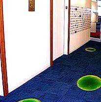 Живая плитка в офисе Google - Chicago, IL