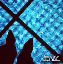 3D отделочный материал используется в напольном покрытии