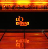 Дизайн ктуба, бара или ресторана с живой плиткой