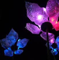 Проект цветов из 3D пленки
